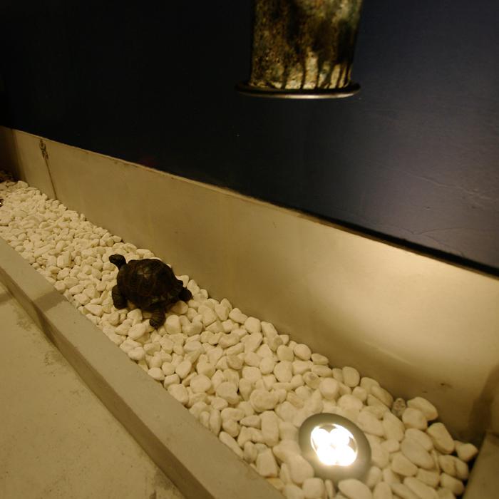 丁子屋トイレリノベーション、広重ブルーの浮世絵厠 亀